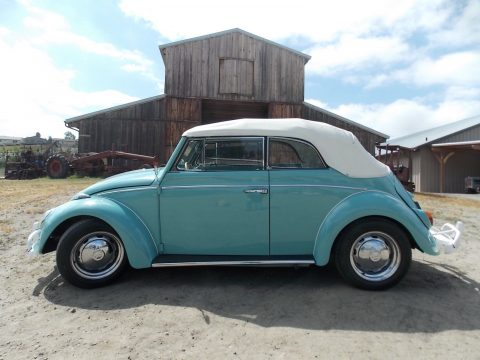 VERY RARE 1962 Volkswagen Beetle for sale