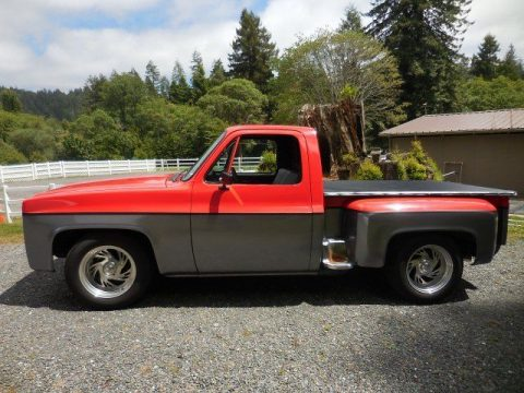 RARE 1985 Chevrolet C 10 Scottsdale for sale